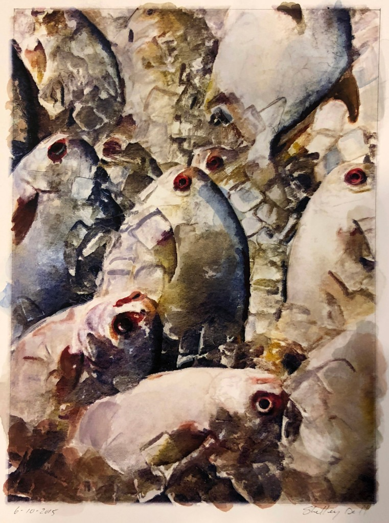 water color painting of fish on ice at a fishmarket